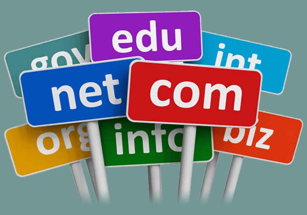 dns-domain-management-services